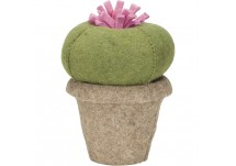 Kids Depot Cactus Queen